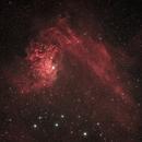 Flaming Star Nebula,                                Shane Jones