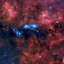 NGC 6914,                                Tolga