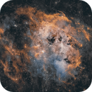 Nebula Structures in  IC 410,                                pete_xl