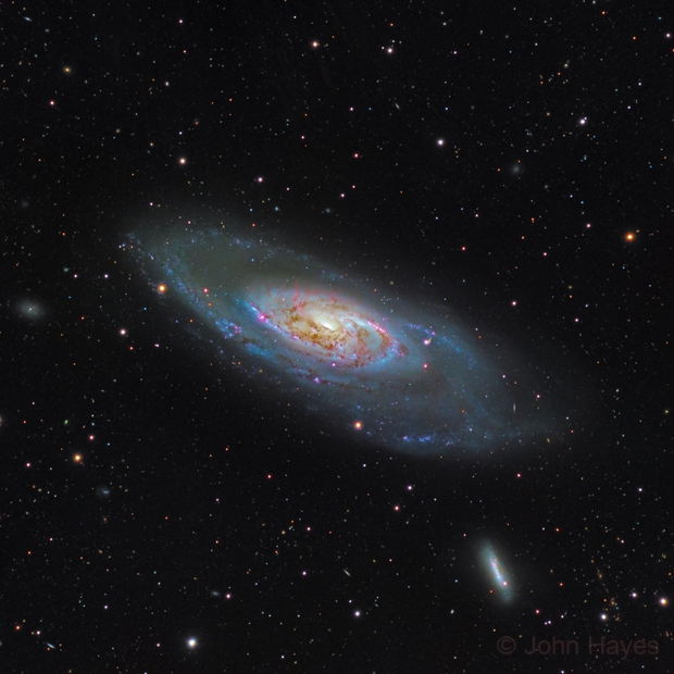 M106 The Splendid Galaxy through a C14,                                John Hayes
