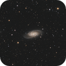 NGC 2903 Leo constellation L_RGB,                                MassimoTuninetti