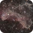 The Gecko Nebula - Sh2-126, LBN 437,                                Crazy Owl Photography