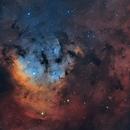 NGC 7822,                                Claudio Nunez