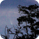 A comet, a few trees and a shooting star,                                Frederic Schuller