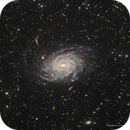 NGC 6744--The Milky Way's Twin,                                Russ Carpenter