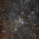 The Ghost Nebula Sh2-136, VdB 141,                                David Wills (PixelSkies)