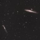 NGC4631,                                Frank Bogaerts