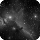 Horsehead in Red Filter,                                gturgeon