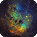 IC 410 - The Tadpoles in Auriga,                                CrestwoodSky