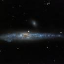 NGC 4631 - Whale Galaxy,                                GALASSIA 60
