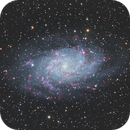 M33 Triangulum Galaxy,                                Dan Kusz
