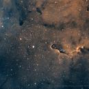 IC1396 Bicolor,                                Gerhard Henning