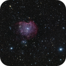 NGC 2175,                                Scotty Bishop