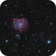 NGC 2175,                                Scotty Bishop
