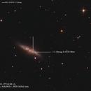 SN2014J in M82,                                Lukasz Socha