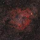 IC1396,                                Raymond