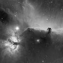 Horsehead and Flame Nebula in Ha,                                Andrei Gusan