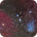 IC447 in Monoceros,                                Simo