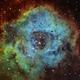 The Rosette Nebula in SHO,                                Marcel Nowaczyk
