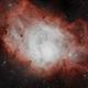 NGC 6523 Lagoon Nebula,                                Carlos Taylor
