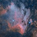 IC-5070 - Pelican Nebula in HA and OIII | my 2nd try,                                dbenji