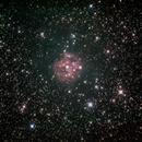 Cocoon Nebula,                                David Quattlebaum