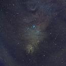 NGC 2264,                                abonengo