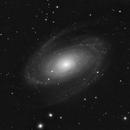 M81 with Orion xx14g GoTo Dobsonian,                                Chris Moran