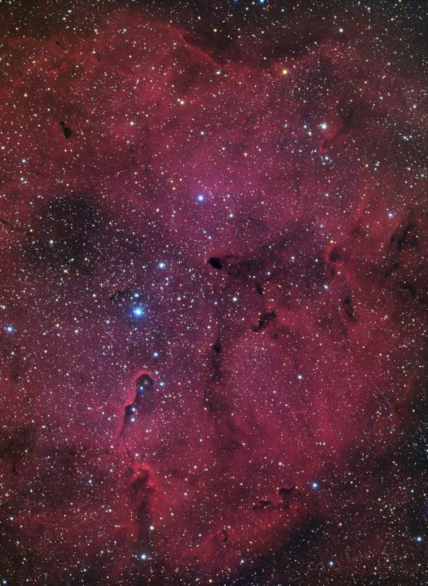 IC 1396 - Elephant Trunk (HaRGB),                                Adam Landefeld