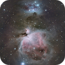 M42,                                Tobias Borer
