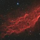 Nebulosa California - NGC 1499,                                Riccardo Sgaramella