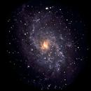 M33 Dobson,                                Angel Galera