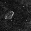 Crescent Nebula,                                Shailesh Trivedi