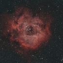NGC2244  Rosette bi-color,                                John Massey