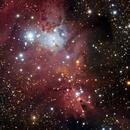 NGC 2264/Cone, Snowflake, and Foxtail nebulea,                                Jeff Dorman