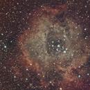 Rosette Nebula,                                John Hosen