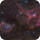 Queen's little garden——— Heart & Soul ———(Mosaic1*4) IC1805 & IC1848 & VDB15,                                WildDuck