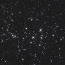 M44 Cluster,                                Jaspal Chadha