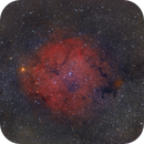 IC 1396,                                Mario Richter