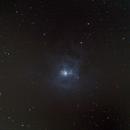 NGC 7023 - Iris Nebula,                                kopi