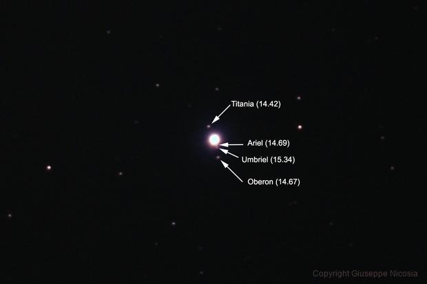 Le lune di Urano,                                Giuseppe Nicosia