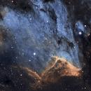 """""""Pelikan Nebula"""" IC5070,                                richardkarnitsch"""