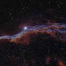NGC 6960 Western Veil Nebula,                                John