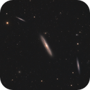 Galaxy Season 2020 - a view into the Virgo Galaxy Group,                                Michael S.