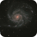M101 - Trip to Bortle 2 skies, But only had a couple of hours without clouds,                                Michael Thurston