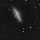 M82,                                Charles Harris