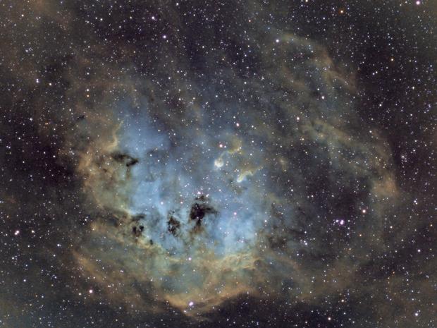 IC410, Nébuleuse des têtards [ASI183MM-Pro],                                Jean-Marc