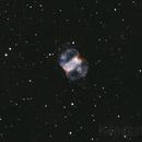 M76 bicolor,                                JuhaK