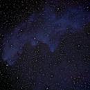 IC 2118 (Witch Head Nebula),                                Klaus Haevecker