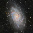 M33 Triangulum Galaxy in HaLRGB,                                Girish